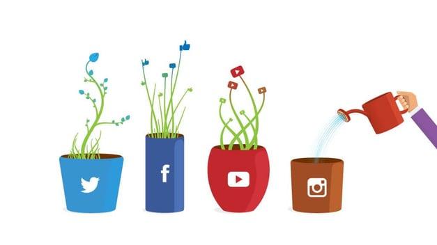 follower-illustration-social-media-peregrine-communications
