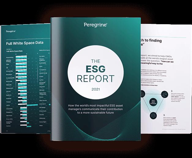 The ESG Report 2021