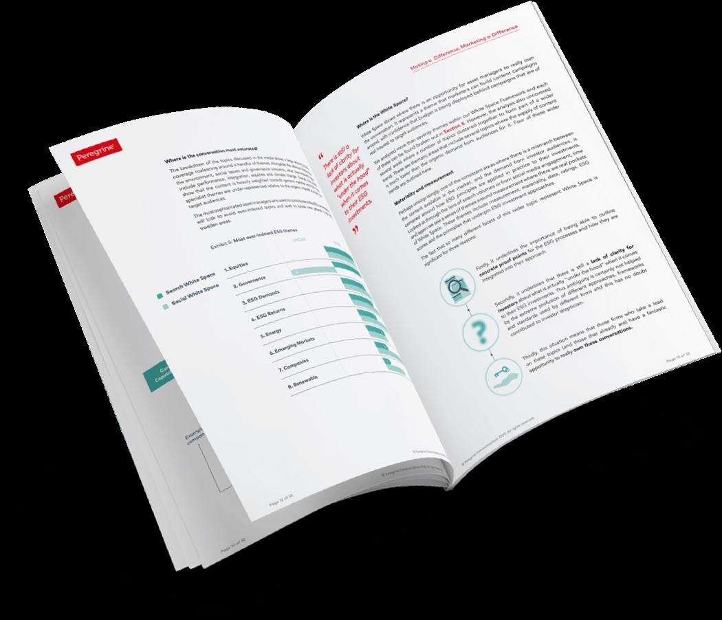 ESG Report 2020 example