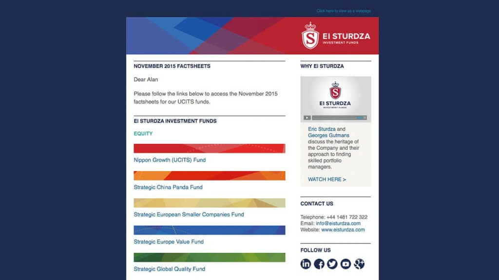 EI Sturdza – Digital & social advertising newsletter example